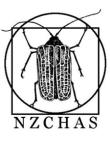 Nzchaslogo_white